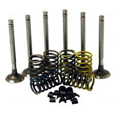 VALVE TRAIN KIT FITS DAVID BROWN 780 880 885 1190 1194 TRACTORS.