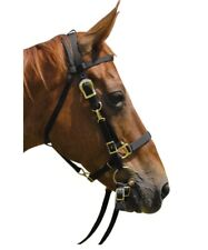Bridle and Halter Combo with Reins For Horses Polypropylene Royal Blue
