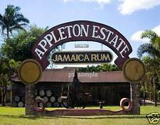 Jamaica - APPLETON RUM ESTATE - Souvenir Fridge Magnet
