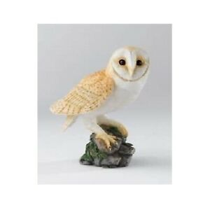 New Boxed Retired Country Artists Barn Owl Model Hand Painted Product CA01511
