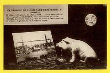 cpa FRANCE 13 - La SARDINE du Vieux PORT de MARSEILLE Porc FISH Old Harbor PIG
