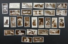 Cigarette Trade Cards: Set Millhoff Real Photos