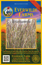 1000 Little Bluestem Native Grass Seeds - Everwilde Farms Mylar Seed Packet