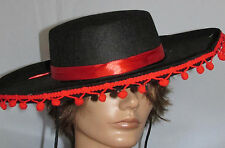 Zorro Halloween Reenactment Black/Red Hat