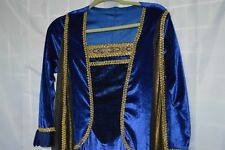 Medieval Gown/Dress Blue/Gold Long Sleeve Cosplay Pull On Stretch RenFest