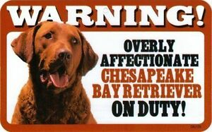 Warning! Overly Affectionate Chesapeake Bay Retriever on Duty Dog Sign