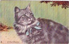 VINTAGE TUCK'S A REAL BEAUTY TABBY CAT KITTEN POSTCARD CALENDER SERIES #1041