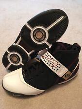 Nike Lebron 5 Game Issued PE Sz 16 Rare Nike Promo Lebron Sample