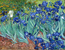 Vincent van Gogh Irises canvas print giclee 8X12 reproduction of painting poster