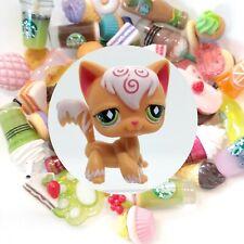 Authentic Littlest Pet Shop Orange Longhair Cat 511 + 🌭 *Suprise Food Items*🥤