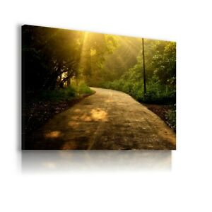FOREST TREES GREEN ROAD SUMMER CANVAS ART PICTURE LN79 UNFRAMED