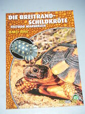 "NTV Art for Art ""Die Breitrand-Schildkröte"""