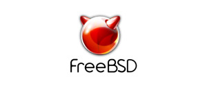 FreeBSD - UNIX Like Operating System. Powerful, Flexible and Customisable! DVD