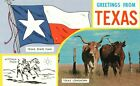 Greetings from Texas, Texas State Flag, Texas Longhorn, Vintage Postcard A87