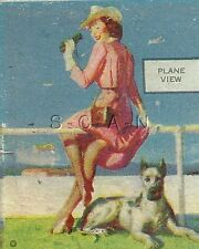 Vintage Semi Nude Advertising Matchbook Cover- Chicago IL- Club- Beer- Dog- Dane