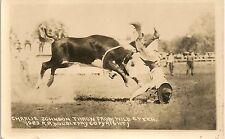 Charlie Johnson Thrown From Wild Steer Cowboy Western Rp Postcard