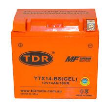 TDR MOTO YTX14BS 12V 14Ah 200CCA Motorcycle Battery