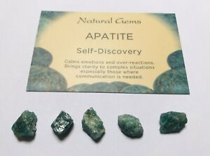 5x Small Green  Apatite rough with free organza bag A stone of manifestation