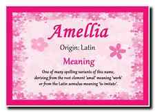 Amellia Personalised Name Meaning Jumbo Magnet
