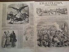 L'ILLUSTRATION 1855 N 646 ARRIVEE DU COURRIER DE LONDRES AU CAMP ANGLAIS DE CRIM