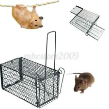 """11X6"""" Rat Trap Cage Live Animal Pest Rodent Mouse Control Catch Trap Hunting"""