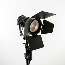 NanGuang CN-30F LED Fresnel Light For Professional Photography - NGCN30F