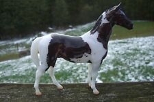 Breyer Scotty Glossy Dark Bay Pinto Tobiano Swaps Mold Gambler's Choice 500 pcs