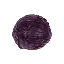 Artificial Vegetable Cabbage Head 18cm Diameter Purple