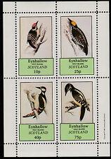 GB lugareños-Eynhallow (1067) 1981 pájaros carpinteros Perf Sheetlet Menta desmontado