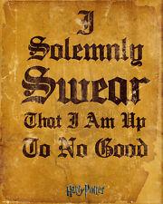 Poster HARRY POTTER - I Solemnly Swear ... 40x50cm NEU z453
