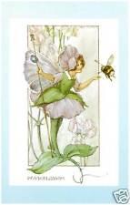 M W Tarrant - Peaseblossom Fairy - MEDICI POSTCARDS