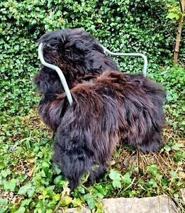 XXXL THE BIGGEST Darkest Brown Icelandic Sheepskin Rug A++ 125cm by 75cm (1850)