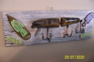 """HUSKEY JOINTED PERCH 1910 8"""" LONG PFLEUGER RARE OLD FISH LURE MOUNTED ON DISPLAY"""