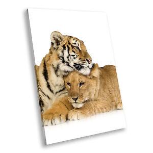 Tiger Lion White Orange Portrait Animal Canvas Wall Art Large Picture Prints