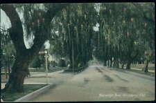 Postcard Pasadena Ca Marengo Avenue View 1907 ?