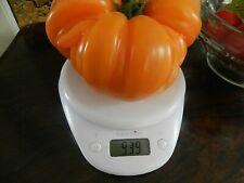 30 Graines de tomate anciennes variété  ananas  jardin bio Bretagne  paysannes _