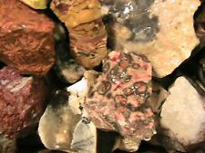 TUMBLER ROCKS Everything Mix 10 Lbs