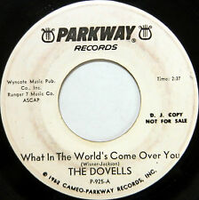 THE DOVELLS 45 What In the World's Come Over You PARKWAY White Label PROMO #A392