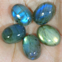 05 Pcs Lot Labradorite Cabochon Loose Gemstone 100% Natural Oval Shape Fire Lot