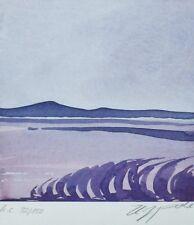 """HANS J.POHL """"Landscape lll """" HAND SIGNED NUMBERED 1985 SERIGRAPH GERMAN ARTIST"""