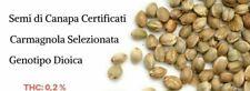 10 SEMI/SEEDS DI CANAPA CON CARTELLINO CERTIFICATO CARMAGNOLA COLLEZIONE 48H CON