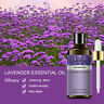 Lavender Essential Oil Pure 5/10/30/100ML Natural Aromatherapy Massage