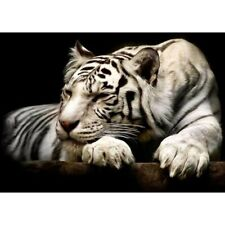 Partial Drill 5D White Tiger Diamond Painting Wall Decors Embroidery Kits Gifts