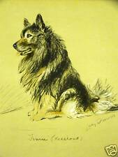 Lucy Dawson 1937 Keeshond Vintage Dog Art Print Matted