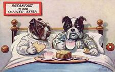 2 BULLDOGS IN BED DRINKING COFFEE, EATING TOAST, FROM VINTAGE POSTCARD,, MAGNET