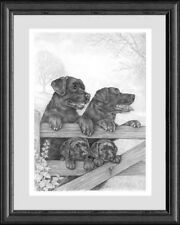 BLACK LABRADORS Giclee dog print by Neil Paterson