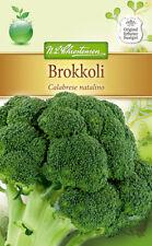 Brokkoli 'Calabrese natalino' - Brassica oleracea Broccoli Blumenkohl Samen 4010