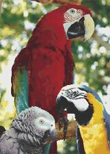 3 PARROTS # 1 - COUNTED CROSS STITCH CHART
