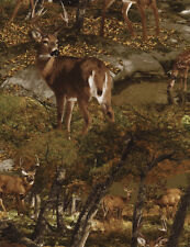 Deer in Woods Nature Outdoors Cotton Timeless Treasures #6425 By the Yard