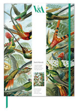 V&A Trochilidae Hummingbirds Sketch Book